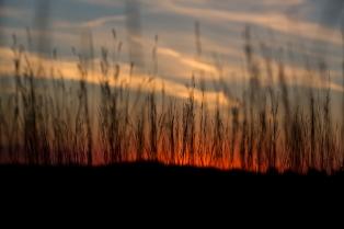 Sunset at Theodore Roosevelt National Park www.usathroughoureyes.com
