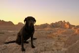 Emma Enjoying Badlands Natl. Park