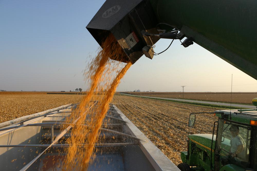 Corn Flows www.usathroughoureyes.com