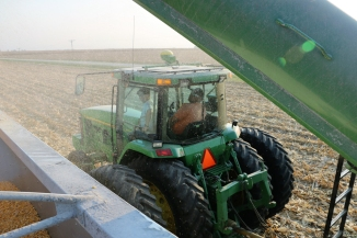 Uploading the Corn