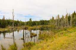 Gunflint Trail, Grand Marais, MN www.usathroughoureyes.com