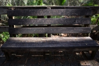 Park bench along the raised walkway through John Chesnut Senior Park, Tarpon Springs, FL / ©2016 Audrey Horn / www.usathroughoureyes.com