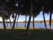 View of Lake Tarpon from Anderson Park, Tarpon Springs, FL. / ©2016 Audrey Horn / www.usathroughoureyes.com