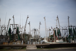 Fishing boats in various states of repair along the Apalachicola River, Apalachicola, FL. / ©2017 Audrey Horn Photo / www.usathroughoureyes.com