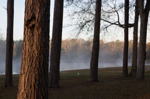Mist rising over the pond at Deer Run RV Park just north of Troy, AL. ©2017 Audrey Horn Photo / www.usathroughoureyes.com