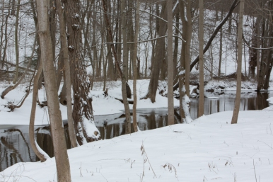 Creek flowing through Holley, NY. www.usathroughoureyes.com