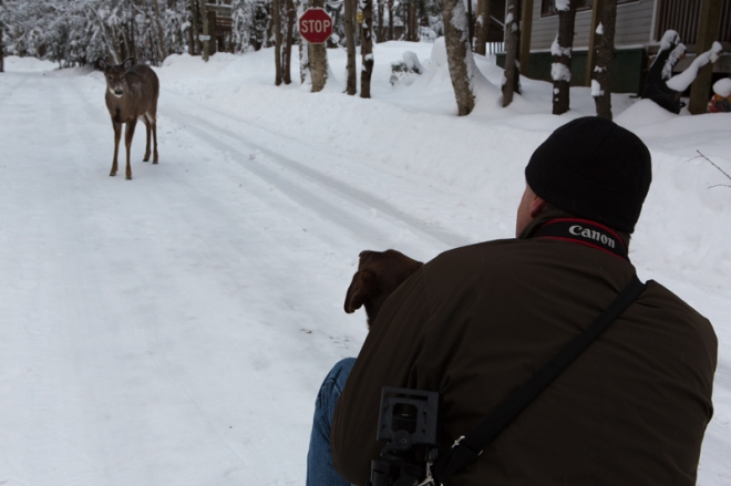 Tom, Emma and the Doe. Old Forge Campground, Old Forge, NY. www.usathroughoureyes.com