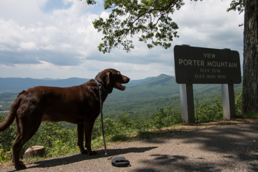 Blue Ridge Parkway - Emma Looking Out. www.usathroughoureyes.com